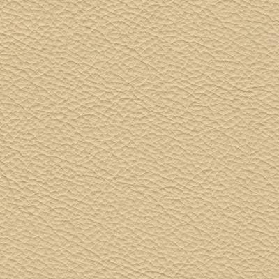 consul-ivory